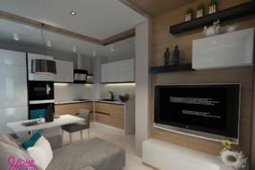 Проект на двустаен апартамент
